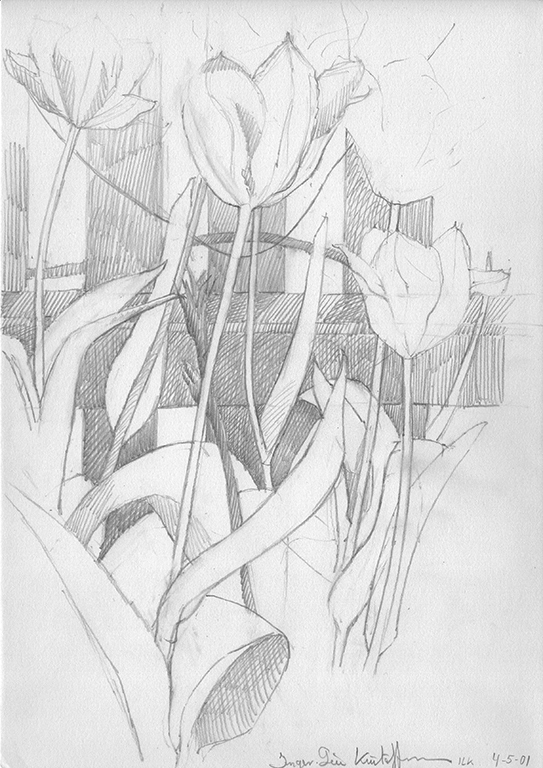 3 Study of tulips Pencil drawing 21x28cm. 2003